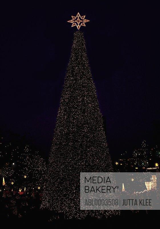 Illuminated Christmas Tree, Berlin, Germany