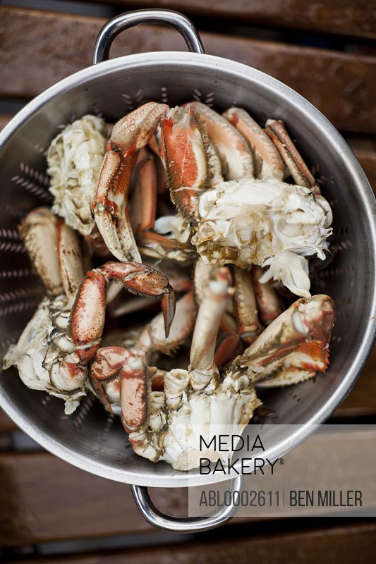 Pieces of Dungeness Crab Draining in Colander