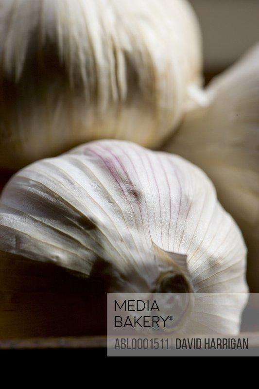 Close up of garlic bulbs