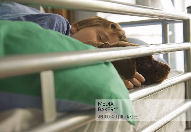 Boy Sleeping with Labrador Puppy