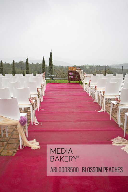 Red Carpet Aisle and Decorated Chairs at Outdoor Wedding Ceremony