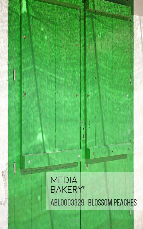 Bright Green Wood Door