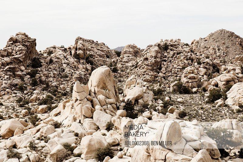 Desert Landscape with Rock Formations