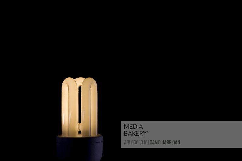 Illuminated energy efficient light bulb