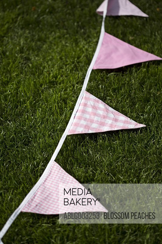 Gingham Bunting Lying on Grass