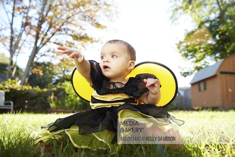 Baby Girl Wearing Bee Costume Sitting in Garden