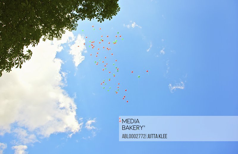 Balloons Flying in a Cloudy Blue Sky