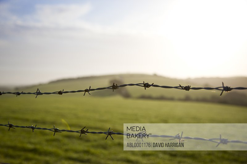 Barbed wire and agricultural land
