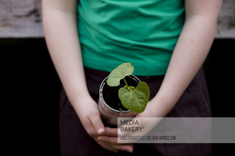 Close up of girl hands holding a plant