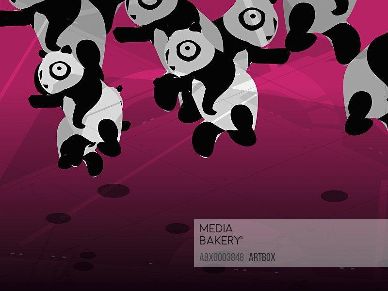Group of pandas