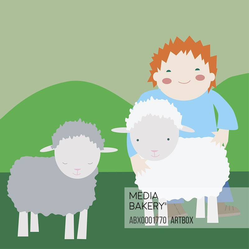 Girl standing with two sheep