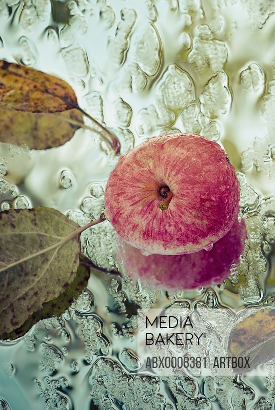 Close-up of an apple and dry leaves on a wet glass