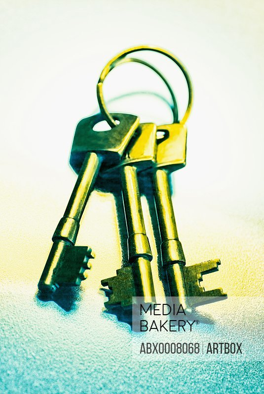 Close-up of a key ring