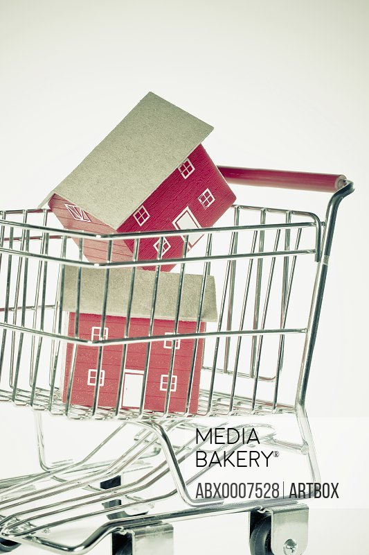 Close-up of two model houses in a shopping cart