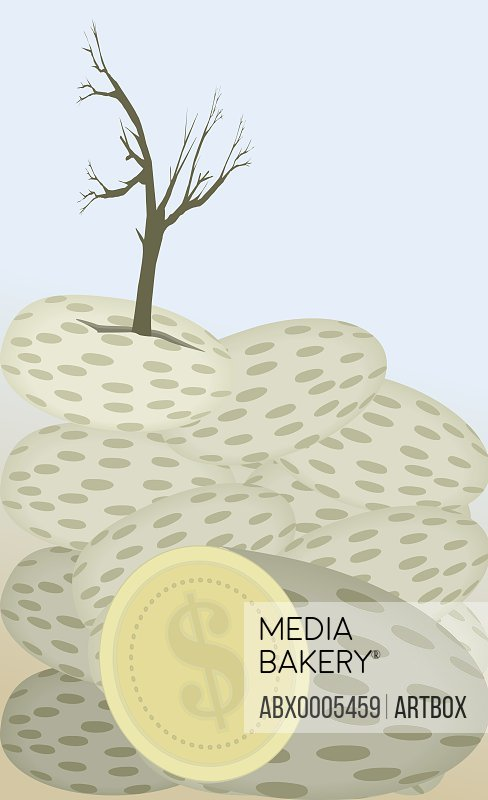 Coin below a tree