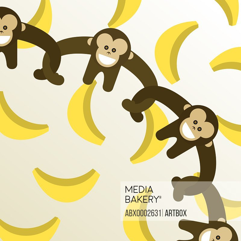 High angle view of monkeys standing arm in arm