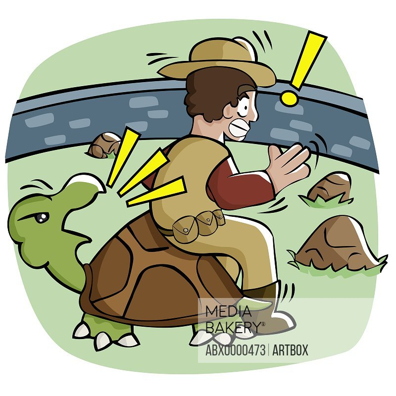 Rear view of a man sitting on a tortoise