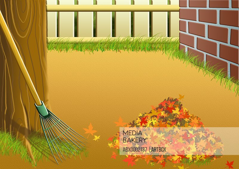 Heap of autumn leaves with a rake near a tree