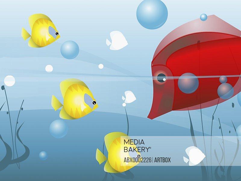 Fish underwater in the sea