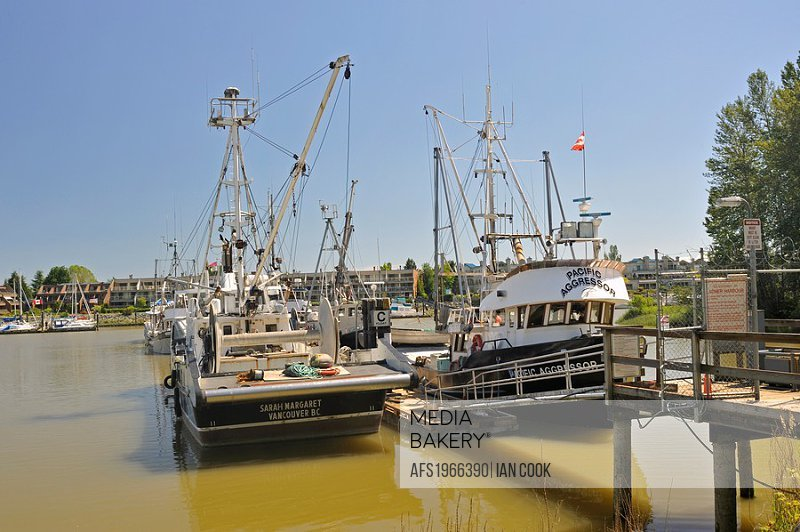 Ladner Harbour Authority Marina, Ladner, South Delta, British Columbia, Canada