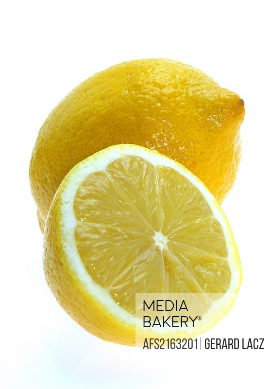 YELLOW LEMON citrus limonum AGAINST WHITE BACKGROUND