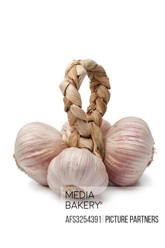 Pink Italian Garlic on white background.