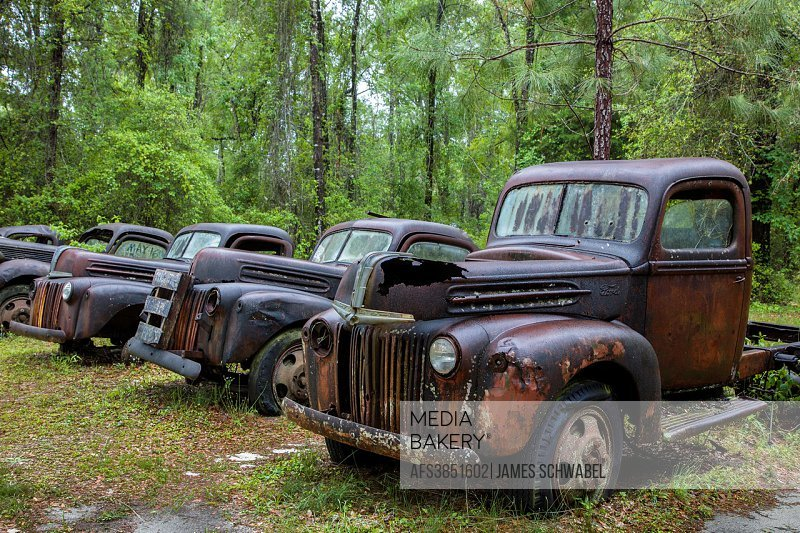 Old rusted abandoned cars and trucks in Crawfordville Florida.
