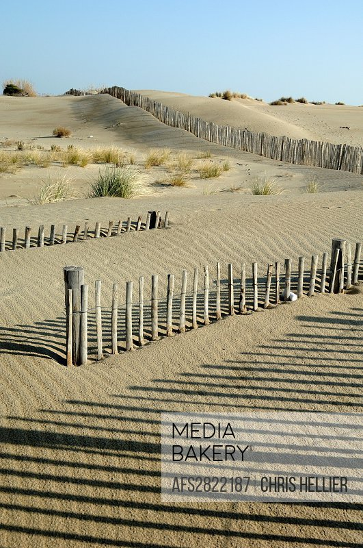 Espiguette Beach Dunes and Dunes Protection Fences Le Grau-du-Roi Camargue Provence France