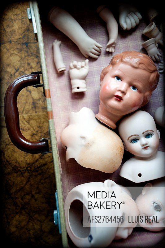 Many porcelain heads and arms together in a suitcase,