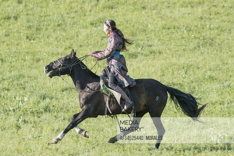 China, Inner Mongolia, Hebei Province, Zhangjiakou, Bashang Grassland, Mongol woman traditionnaly dressed on a horse, traditional exercise of address.