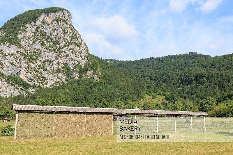 Triglav national park, Bohinj valley, Julian Alps, Slovenia, Europe.