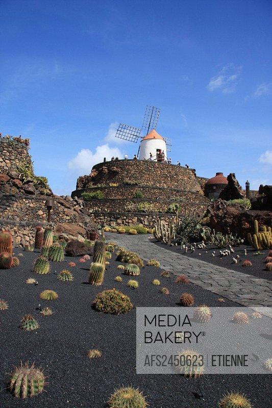 Lanzarote island, Spain, Europe, Canary islands, Jardin de Cactus, cactus garden, cacti, Cesar Manrique, travel, volca