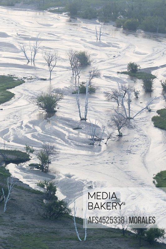 China, Inner Mongolia, Hebei Province, Zhangjiakou, Bashang Grassland, River with dead trees.