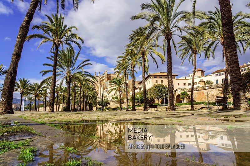 Parque del Mar, Palma, Mallorca, Balearic Islands, Spain