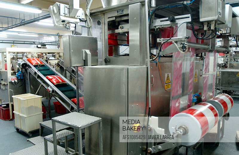 Frozen food industry, packing line. Navarre. Spain