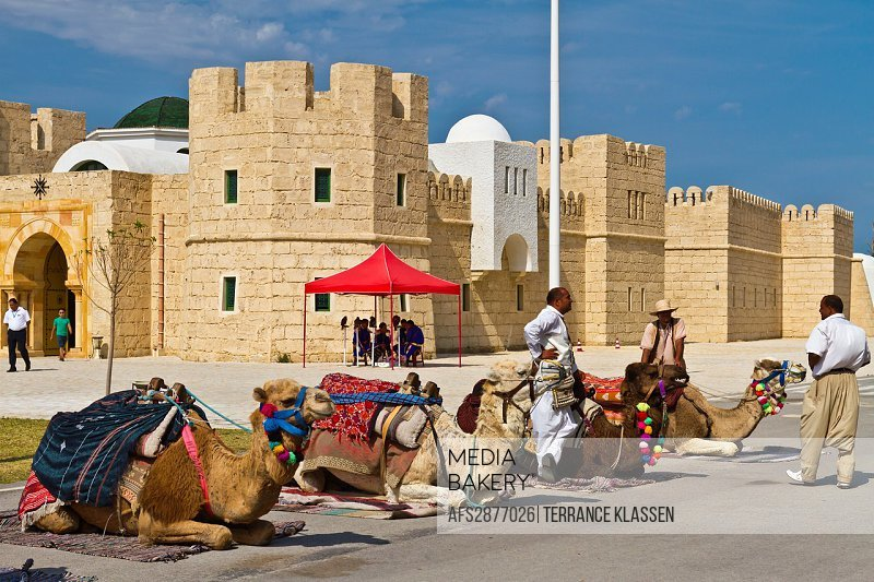 Camels for rent for photos at the tourist welcome center at the Tunisian Port of La Goulette
