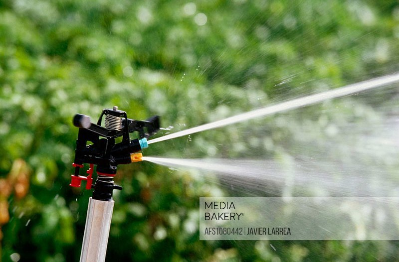 Sprinklers irrigating potato fields. Navarre. Spain