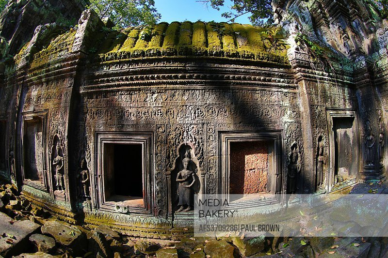 Giant tree roots at Ta Phrom, Khmer Temple in Angkor, Siem Reap, Cambodia.
