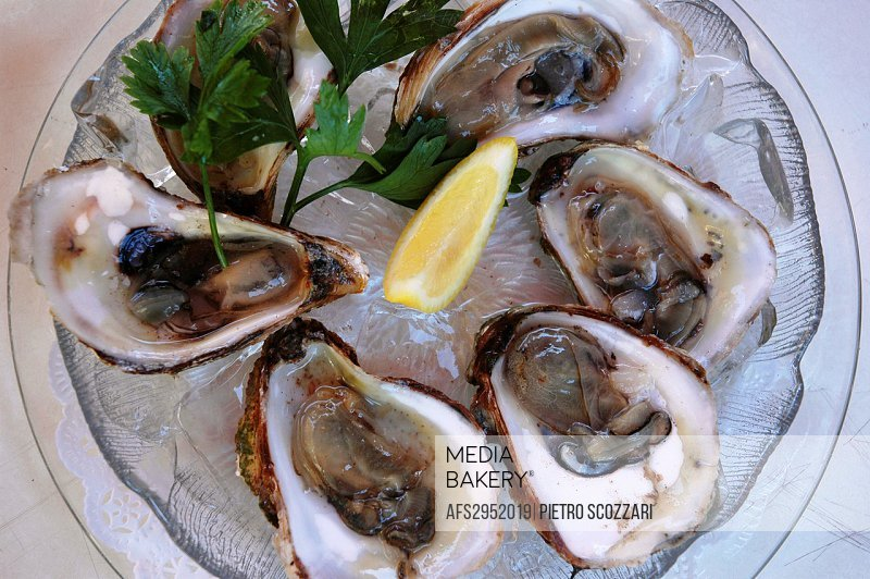 Montauk, New York, fresh oysters served in a restaurant