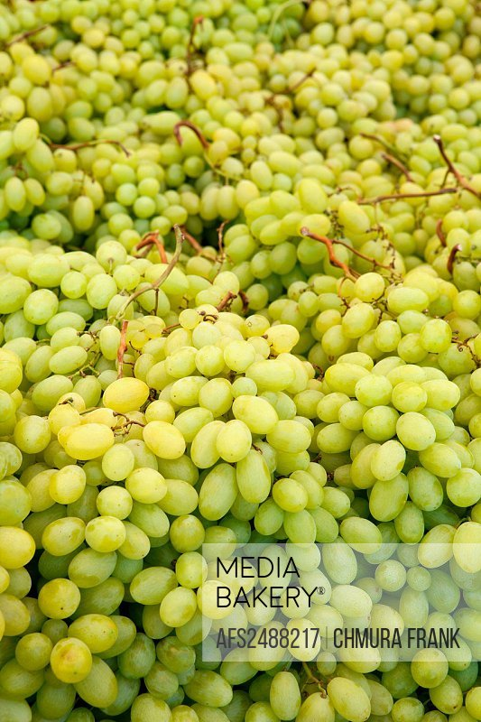 agriculture, business, Croatia, colour, colourful, display, food, fresh, fruit, green, health, healthy, Istria, market, natural, nutrition, organic, r...