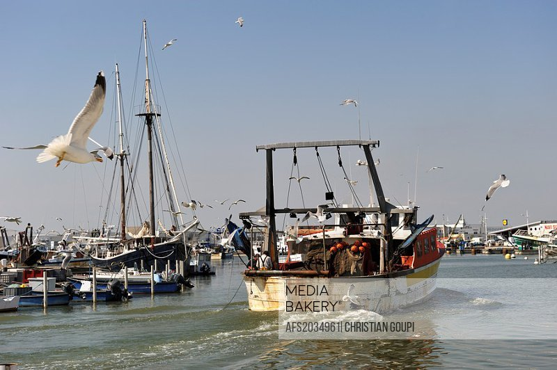trawler in the channel of the port, Grau du Roi, Gard department, France, Europe