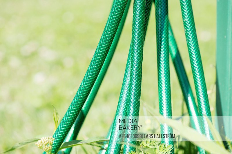 Green garden hose. Detail of gardening equipment.