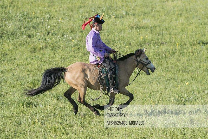 China, Inner Mongolia, Hebei Province, Zhangjiakou, Bashang Grassland, Mongol man traditionnaly dressed on a horse, traditional exercise of address