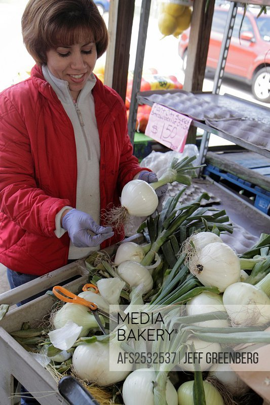 Florida, Plant City, Forbes Road Produce, Hispanic, woman, produce stand, onions, white, for sale,