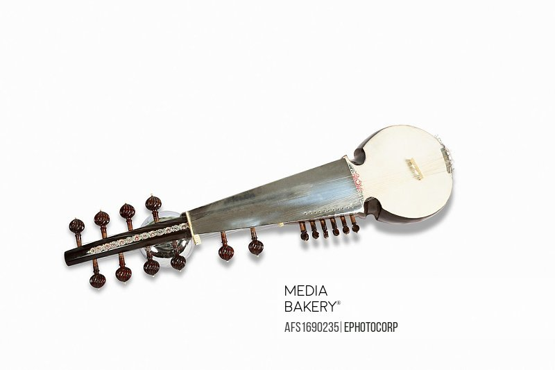 Sarod, a popular classical musical string instrument of India.