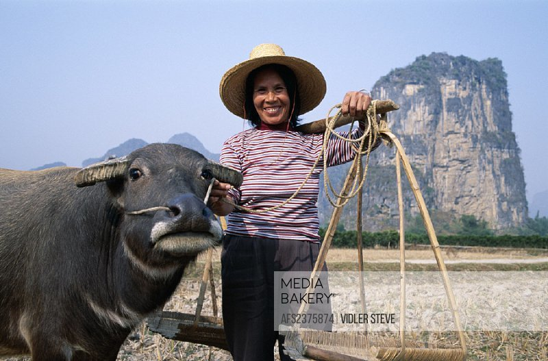 Asia, China, Farming, Guangxi, Guilin, Holiday, Landmark, Model, Province, Released, Tourism, Travel, Vacation, Water buffalo, W
