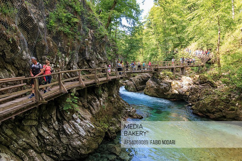 Tourists walking inside the Vintgar Gorge on a wooden path between Bled Lake and Bohinj Lake in Slovenia, Europe.