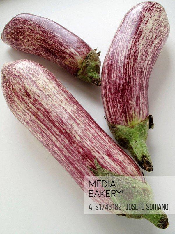 Striped eggplant (Solanum melongena)