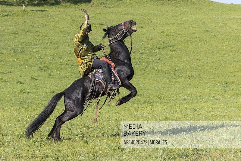 China, Inner Mongolia, Hebei Province, Zhangjiakou, Bashang Grassland, Mongol on a horse, demonstration of pitching.