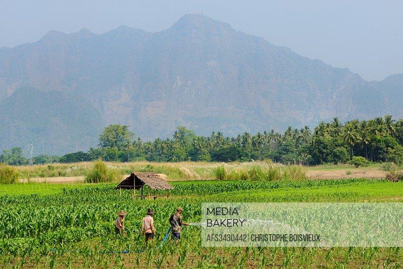 Myanmar, Kayin (Karen) State, Ko Lai island, Karen farmers and mount Zwegabin (723 m).